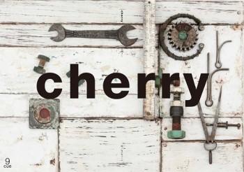 cherry_03