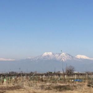 山が見える、のどかな場所